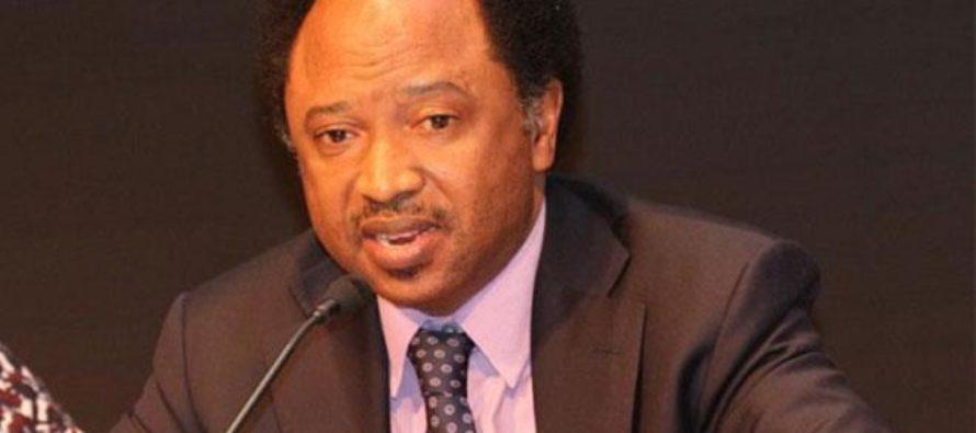 APC Will End With Buhari In 2023 – Shehu Sani